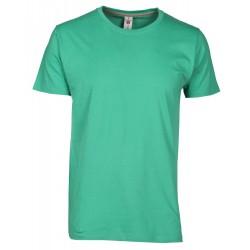 tee-shirt manches courtes homme Vert émeraude